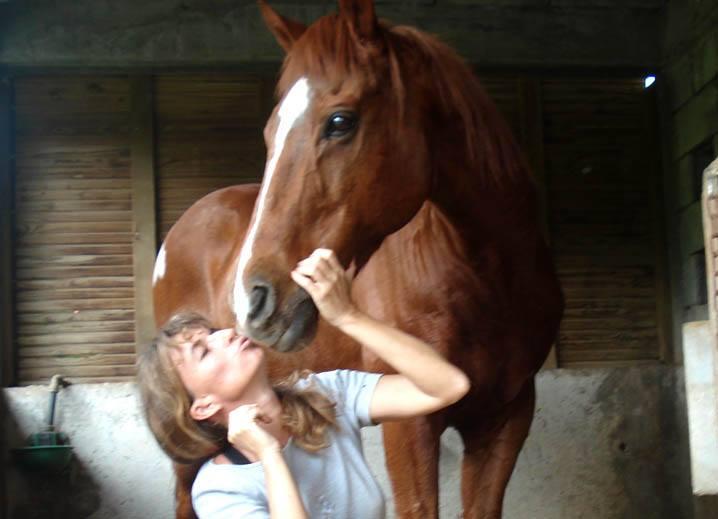 chaboita cheval
