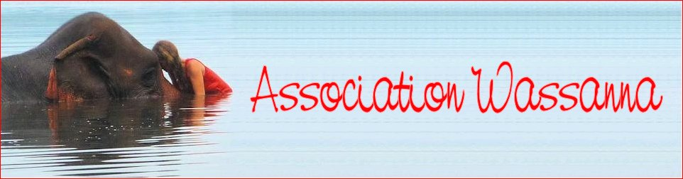Association Wassanna